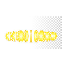 lemon slices isolated vector image