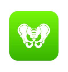 pelvis icon digital green vector image