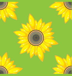 summer seamless pattern with sunflower vector image