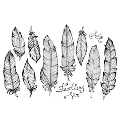 Hand drawn bird feathers closeup big set isolated vector image vector image