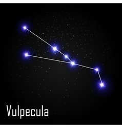 Vulpecula Constellation with Beautiful Bright vector image vector image