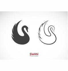 two swan design on white background wild animals vector image
