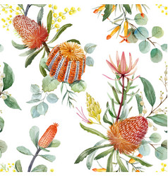 Watercolor australian banksia pattern vector