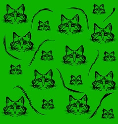 Black contours of the heads of cats vector image
