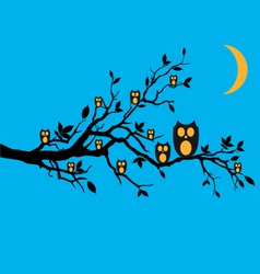 night owls on tree branch vector image vector image