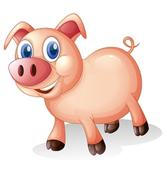 A fat and smiling pig vector image