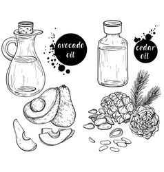 Black and white set organic ingredients vector