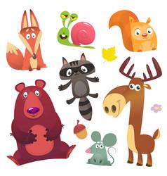cartoon forest animals set flat vector image