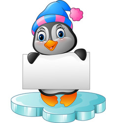 cute little penguin holding blank sign vector image