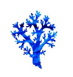 Decorative coral vector