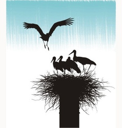 Family of storks in nest vector