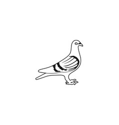 Pigeon logo design vector