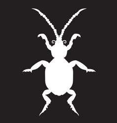 White beetle on a black forehead vector