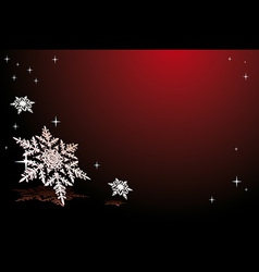 snowflakes on red vector image