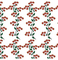 Branches red berries natural seamless background vector image vector image