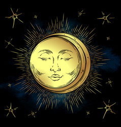 antique style hand drawn art golden sun and moon vector image