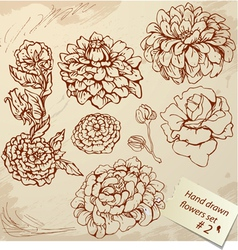 Set of Vintage Realistic graphic flowers - hand dr vector image vector image