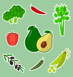 a set of fresh vegetables in a white stroke on a vector image
