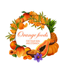 Color diet orange food healthy nutrition fruits vector
