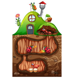 Scene with insects in underground hole vector
