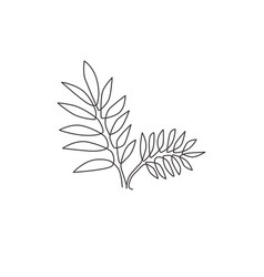 single continuous line drawing tropical leaves vector image