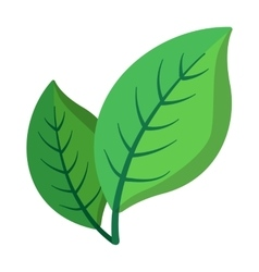 Two green leaves cartoon icon vector