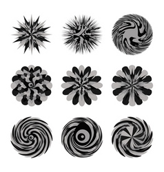 illustrated decorative set of circular floral shap vector image vector image