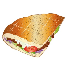 Kebab bread salad vector