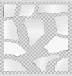 Paper torn to pieces scrap paper web banner vector
