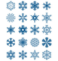 set different blue snowflakes vector image