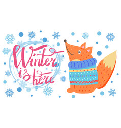 Winter is here poster with fox vector