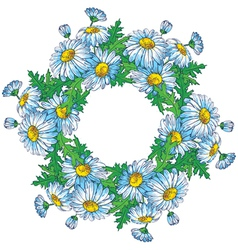 Bouquet of Daisies vector image vector image