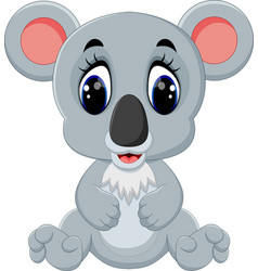 cartoon adorable koala sitting vector image