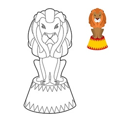 Circus lion coloring book Big Serious animal in vector image
