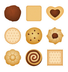 Different shapes eating biscuit home made vector