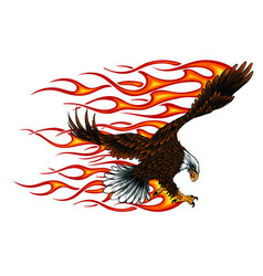 flaming eagle - vehicle graphic ready for vinyl vector image