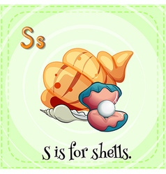 Flashcard letter S is for shells vector image