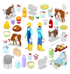 isometric milkman with bottle of milk cow vector image