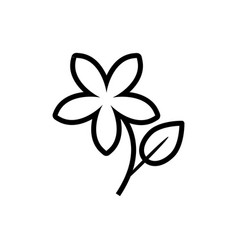 Jasmine flower icon vector