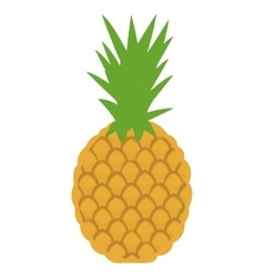 Whole pineapple icon vector