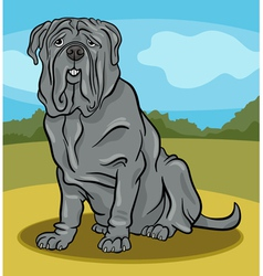 neapolitan mastiff dog cartoon vector image