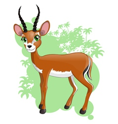 Antilope vector