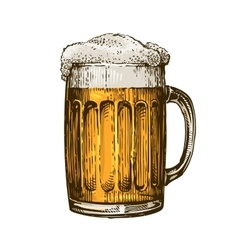 Beer in glass mug with foam Hand drawn vector