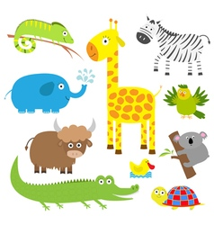 Cute animal set Baby background Koala alligator vector