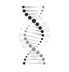 Dna icon chromosome molecule design icon vector