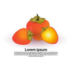 persimmon fruit on white background healthy vector image