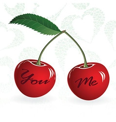 Seamless red cherry love valentine couple berry vector image