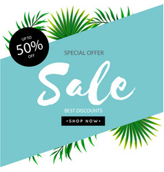special offer sale up to 50 off leaves blue backg vector image