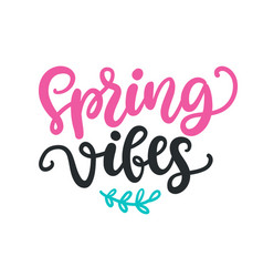 Spring vibes modern calligraphy quote vector