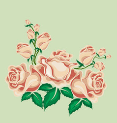Tea roses in cartoon style vector